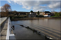 TQ5203 : The Cuckmere in Flood by Peter Jeffery