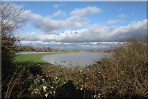 TQ5203 : Very Wet Water Meadows by Peter Jeffery