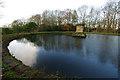 SE7170 : Reservoir, Castle Howard by Ian Taylor