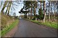 SK7963 : Lane to Carlton on Trent by Julian P Guffogg