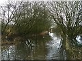 SJ7820 : Flooded path to Aqualate bird hide by Jonathan Hutchins