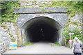 SK1273 : Chee Tor Tunnel, western Portal by N Chadwick