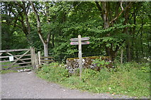 SK1273 : Footpath sign on the Monsal Trail by N Chadwick