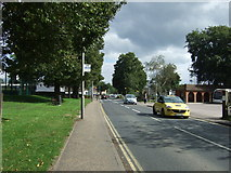 TM1179 : Bus stop on Park Road, Diss by JThomas