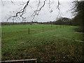TQ1760 : Horse Paddocks by Epsom Common by Hugh Venables