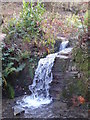 SW8340 : Waterfall in Namphillows Wood by Rod Allday