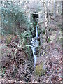 J3729 : Waterfall on Amy's River in Donard Wood by Eric Jones