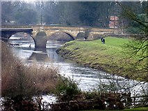 SE4843 : The River Wharfe upstream of the collapsed bridge by Graham Hogg