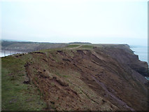 TA1281 : Cliffs, Carr Naze by JThomas