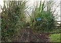 SX2264 : Green lane to Dobwalls by Derek Harper