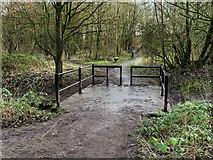 SJ5799 : Skitters Wood, Bridge over Millingford Brook by David Dixon