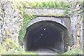 SK1672 : Cressbrook Tunnel, western portal by N Chadwick