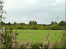 TQ5782 : Over the ditch, Belhus Woods Country Park by Robin Webster