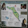 SP8914 : Millhoppers Reserve Information Board by Chris Reynolds