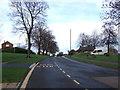 NZ2615 : Bus stop on Newton Lane by JThomas