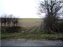 TA0779 : Farm track off the A1039 by JThomas