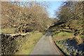 SH7220 : Lane at Dolfawr by Jeff Buck