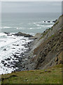 SS2224 : Cliff at St Catherine's Tor in Devon by Roger  Kidd