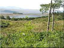 NC5314 : Loch Shin at West Shinness by M J Richardson