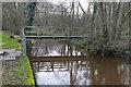 TQ0161 : Footbridge over the Bourne by Alan Hunt