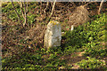 TF0543 : Parish Boundary by Richard Croft