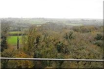 SX5857 : Woodland below the railway line by N Chadwick