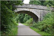 SK1971 : Footbridge, The Monsal Trail by N Chadwick