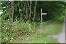SK2071 : Footpath signpost, The Monsal Trail by N Chadwick