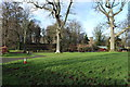 NS2310 : Picnic Area at Culzean Country Park by Billy McCrorie