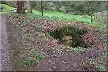 SX7962 : Subterranean, Dartington Hall Gardens by Derek Harper