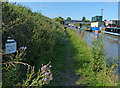 SJ6874 : Trent & Mersey Canal Milepost along the towpath by Mat Fascione