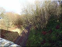 SH9234 : The B4403 road crosses the Bala Lake Railway by John Lucas