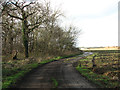 TM1780 : Track past Billingford Wood by Evelyn Simak
