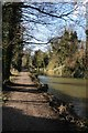SO8104 : Towpath beside the Stroudwater Canal by Philip Halling