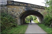 SK2169 : A619 Bridge over the Monsal Trail by N Chadwick