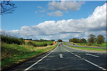 SE4390 : A19 heading north by Robin Webster