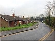 TQ8833 : Hales Close, Tenterden by Chris Whippet