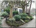 SK5640 : Arboretum, Nottingham by David Hallam-Jones