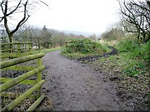 SK0296 : The Longdendale Trail splits in two by Christine Johnstone