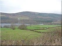 SK0397 : Fields west of Deepclough Farm, Longdendale by Christine Johnstone