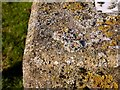 SK9407 : Rivet bench mark near Rutland Water dam by Alan Murray-Rust