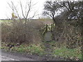 TL6002 : Footpath to Spriggs Lane by Adrian Cable