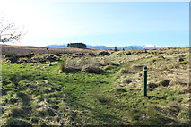 NX5987 : Polmaddy Historic Settlement by Billy McCrorie
