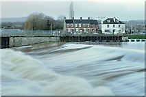 SX9291 : Trews Weir in Exeter by Andrew Tryon