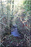 SP4111 : Ditch beside Wroslyn Road at junction with Cuckoo Lane by Roger Templeman