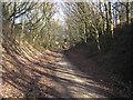 SE4032 : Leeds Country Way near Garforth by John Illingworth