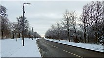 NS3977 : Road leading from Vale of Leven Industrial Estate by Lairich Rig