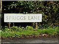 TL6003 : Spriggs Lane sign by Adrian Cable