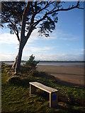 NT6378 : Coastal East Lothian : Somewhere To Plonk Yer Bum by Richard West