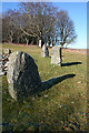 NJ7428 : Loanhead of Daviot Recumbent Stone Circle (15) by Anne Burgess